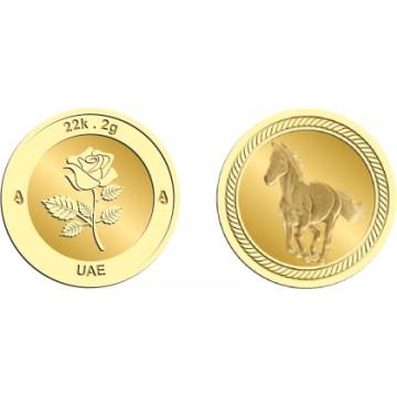 22k 2Gram Gold Coin